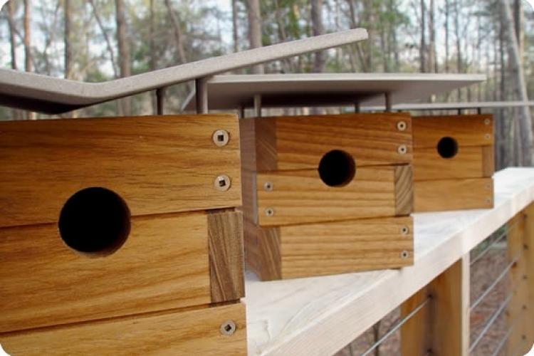 Ralph Case Study Modern Birdhouse
