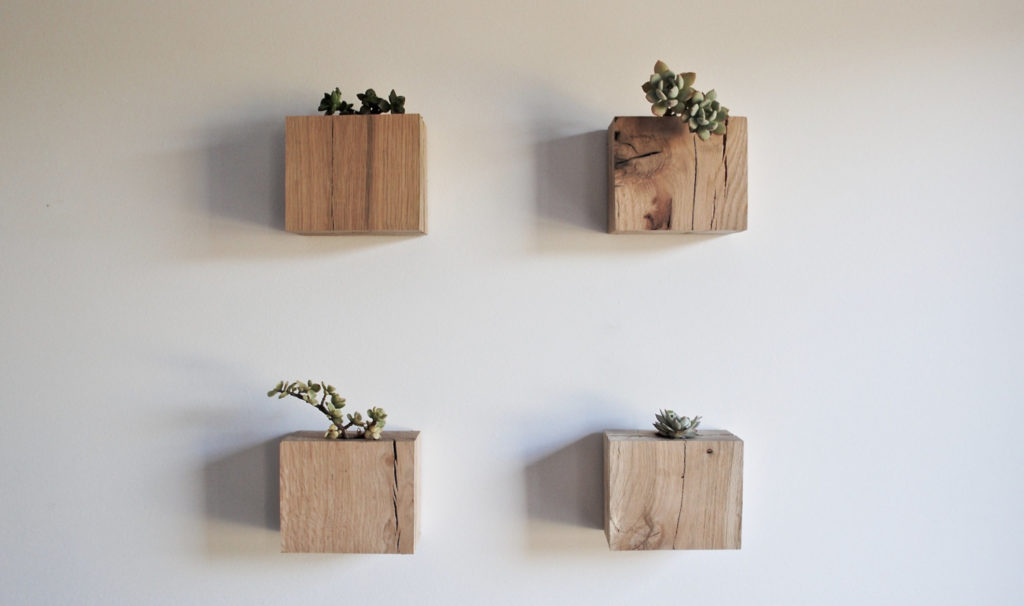 Salvaged Oak Succulent Cubes by RAKA Mod